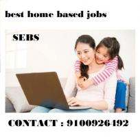 increase your monthly income by SEBS
