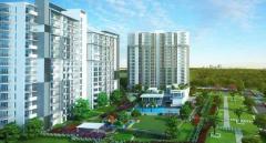 Godrej Oasis – 2 & 3BHK Luxury Homes on Dwarka Expressway