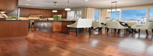 Best Wooden Flooring Importer in Noida